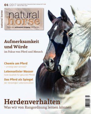 NH13-Titel_fuer_Titel-PDF_v3.indd