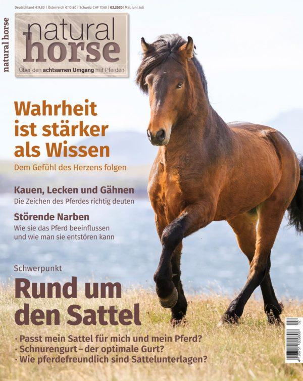 Natural Horse 29, Rund um den Sattel